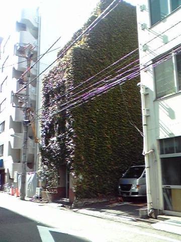 緑に覆われたビル@西新橋