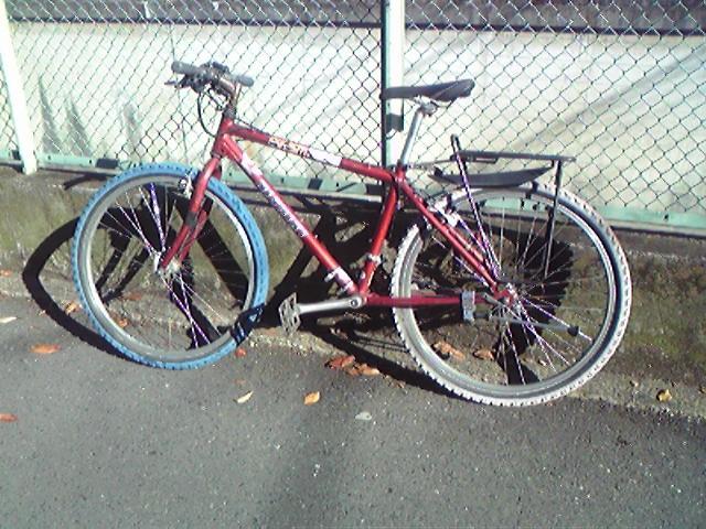 自転車ニシキ復活