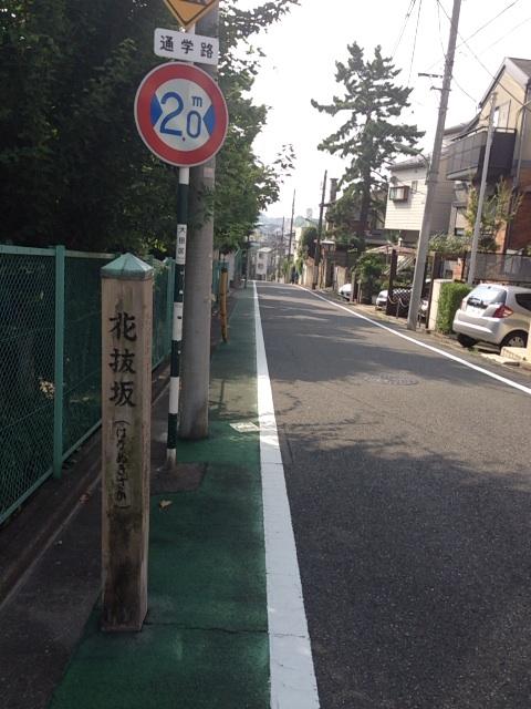 花抜坂 20130816_hananukizaka