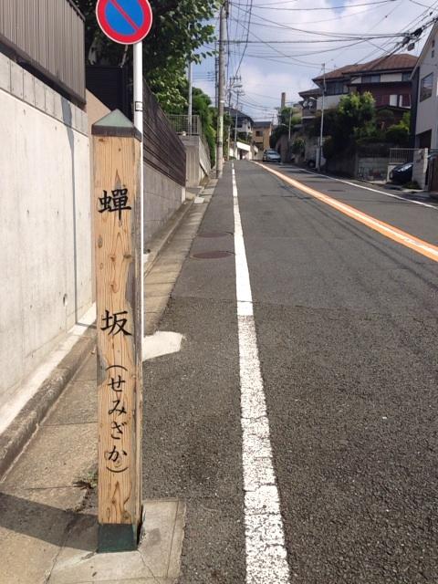 20130816_semizaka