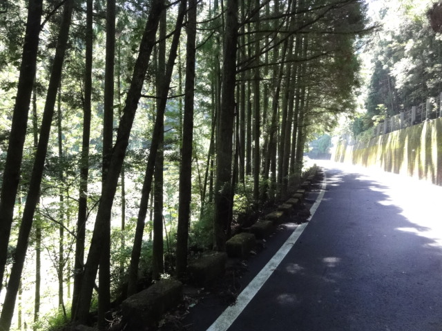 ダム向うの道