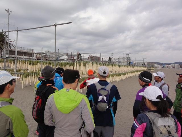 三浦半島縦断トレイル