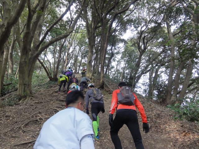 三浦半島縦断トレイル06028